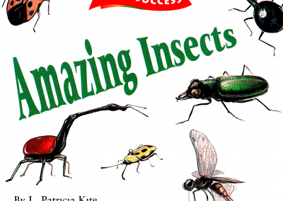 AMAZING INSECTS cover cropped